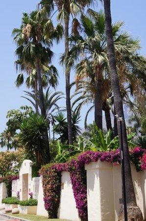 Guadalpin Suites: дорога к пляжу