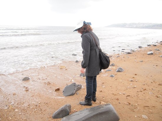 Lyme Regis fossil walks: My most eager mother!