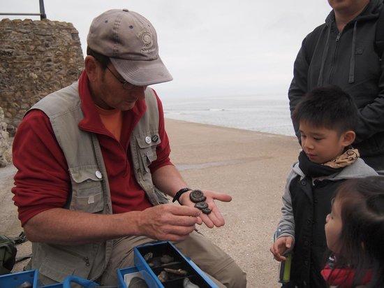 Lyme Regis fossil walks: Pre-Hunting Talk