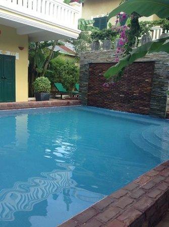 Golden Banana Bed & Breakfast & Superior Hotel: pool up near B&B