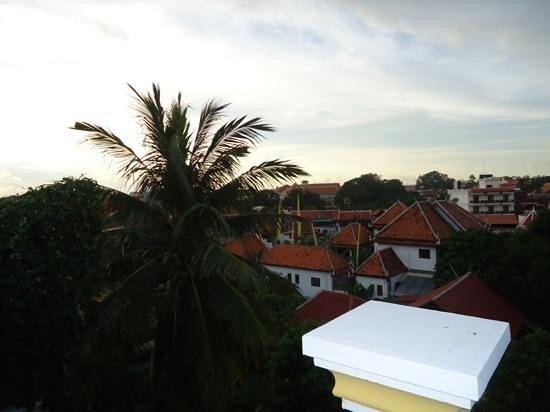 Golden Banana Bed & Breakfast & Superior Hotel: view from balcony