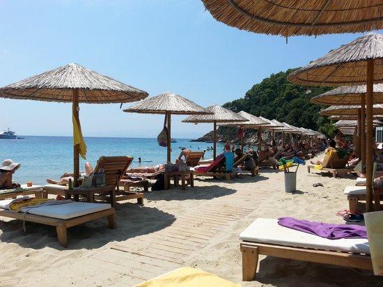 Mystique Beach Bar Restaurant: spiaggia del risto-bar
