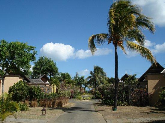 Maradiva Villas Resort and Spa: L'allée qui mène aux villas
