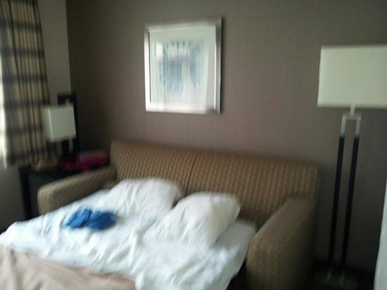 Comfort Inn & Suites Zoo / SeaWorld Area: Sofabed