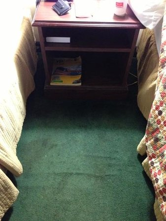 Econo Lodge Tupelo: dirty carpet