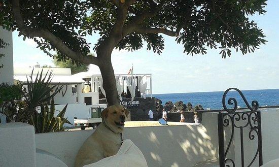 La Sirenetta-Park Hotel: vista