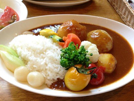 Ki no iinakama : Biei vegetable curry rice - very good!