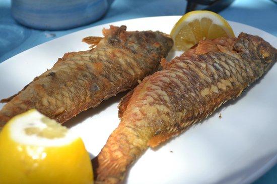 Koumpara Seafood Restaurant: pesce locale