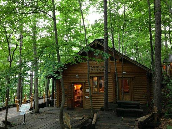 Ningle Terrace: The Cafe