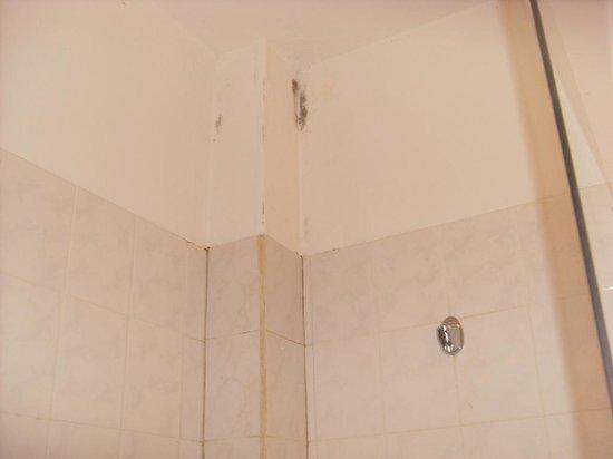Hotel Le Petit Havre: moissisure salle de bain