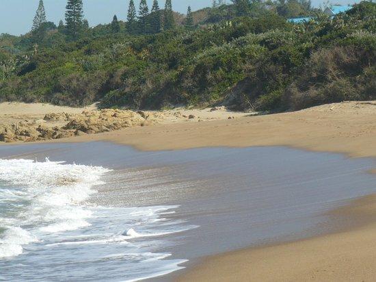 Cracker Bay B&B: Beach