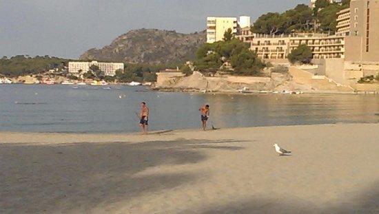 Aparthotel Novo Mar: playa palmira 4 min max