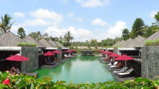 Furama Villas & Spa Ubud: Piscina pubblica