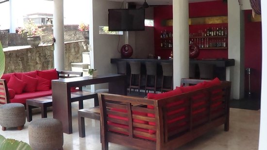 Furama Villas & Spa Ubud : Bar