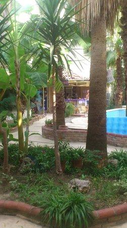 Tropic Hotel: kanon utsikt från rumet