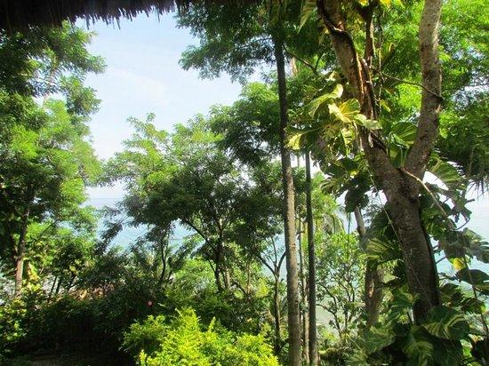 Tuko Beach Resort: view from penthouse