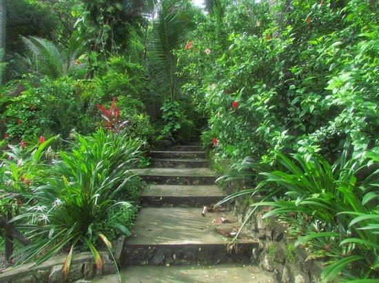 Tuko Beach Resort: steps to restaurant