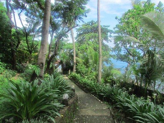 Tuko Beach Resort: path to beach