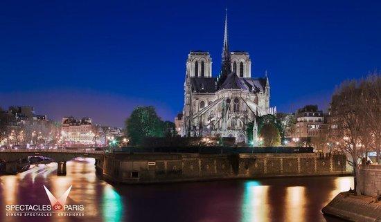 Spectacles De Paris: Notre Dame de Paris vue de la Seine