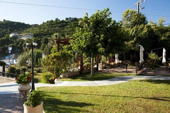Elena's garden...