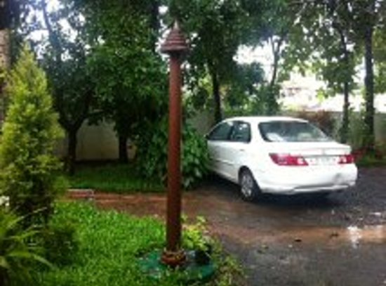 Palm Grove Service Villa : Palm grove in rain 1