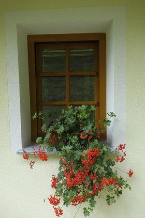 Kmecka hisa Stiftar: Detail Tourist Farm Stiftar