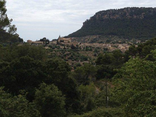 Mirabo de Valldemossa: View from the terrace