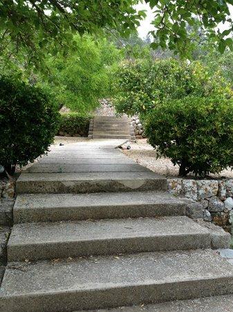Mirabo de Valldemossa: Garden staircase to pool