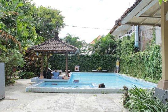 Ayu Beach Inn: kolam renang
