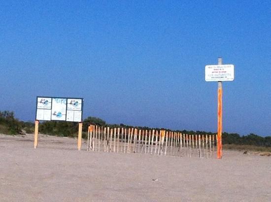 Espiguette Beach: cartello che indica il debutto della spiaggia nudista.