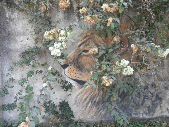 Sakina campsite: dipinti sul muro