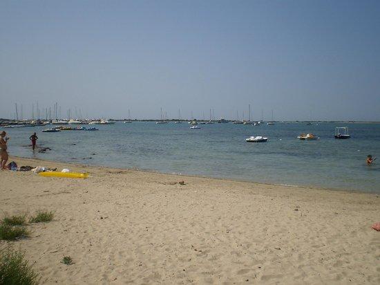 Hotel Mediterraneo: spiaggia davanti l'hotel