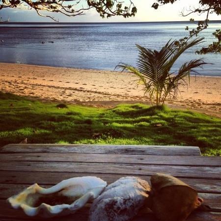 Lawaki Beach House: The view from the bure.