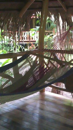 Hotel La Costa de Papito: The comfy hammock on our porch