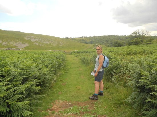 The Tennants Arms: Walk - near Dib Scar