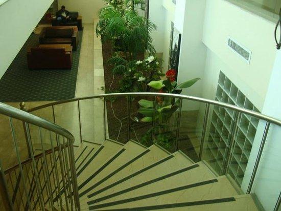 C Hotel Eilat Hotel: Лестница и холл