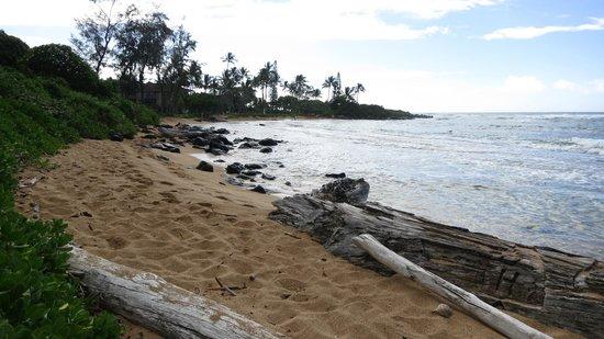 Kapaa Sands: Beach area