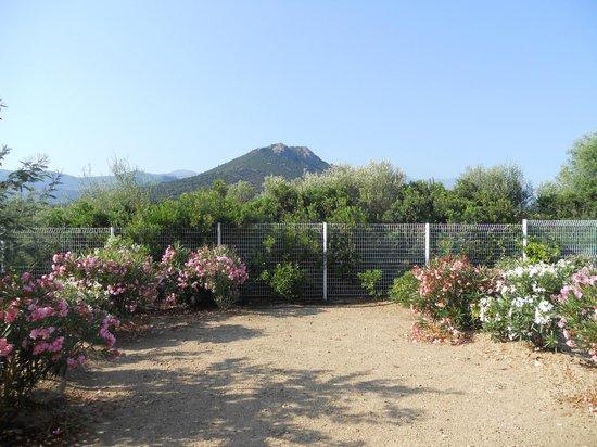 Résidence-Club Odalys Les Villas Bel Godère : vue de notre terrasse