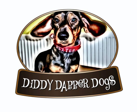 ‪Diddy Dapper Dogs‬