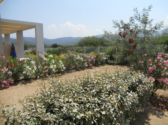 Résidence-Club Odalys Les Villas Bel Godère : vue jardin