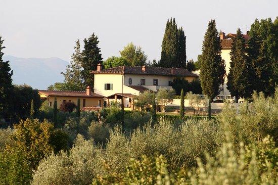 Villa Damiani : Esterno