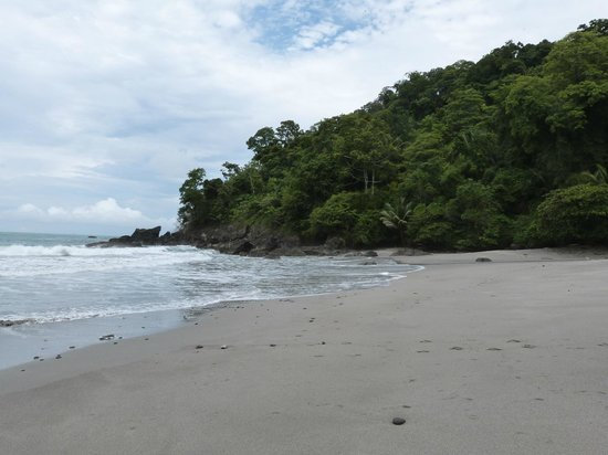 Arenas del Mar Beachfront & Rainforest Resort: nearly private beach