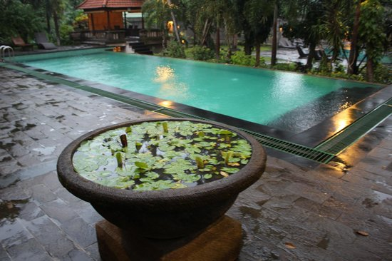 Champlung Sari Hotel: Top pool