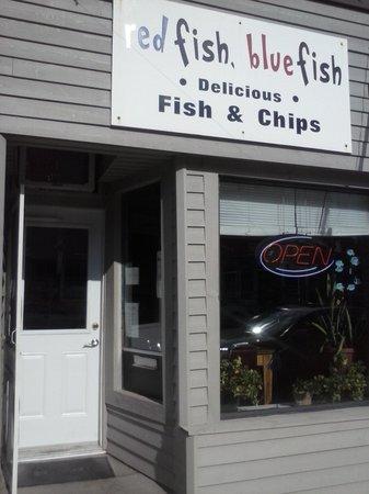 Red fish Blue fish Wiarton Ontario. 2013
