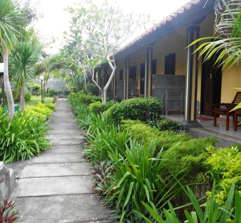 Segare Anak Bungalows & Restaurant: Hotel's Garden