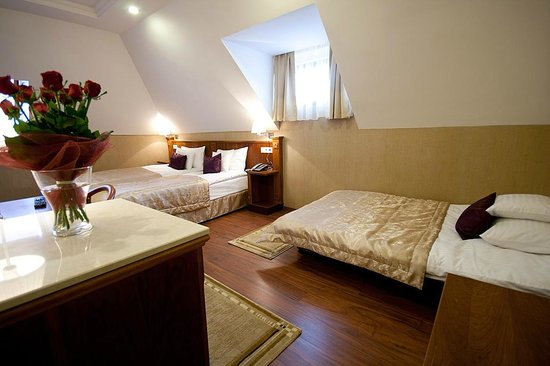 Gold Hotel Budapest: Triple room