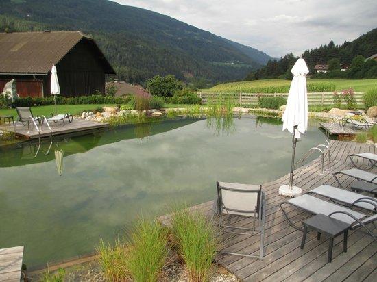 Hotel Leitgamhof: laghetto balneabile
