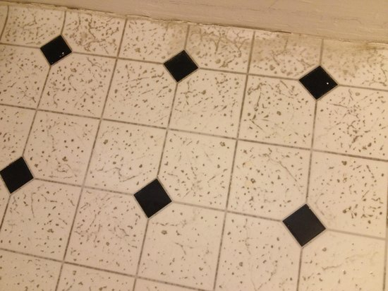Glen Oaks Inn: Bathroom Floor