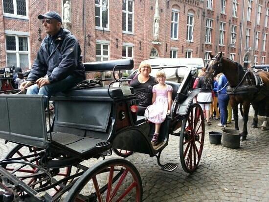 Horse Drawn Carriage Tours: enjoying the horse drawn carriage tour