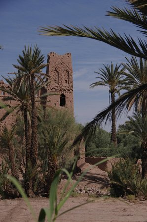 Tours Of Peace & Morocco Holidays - Day Tours: one of many kasbahs